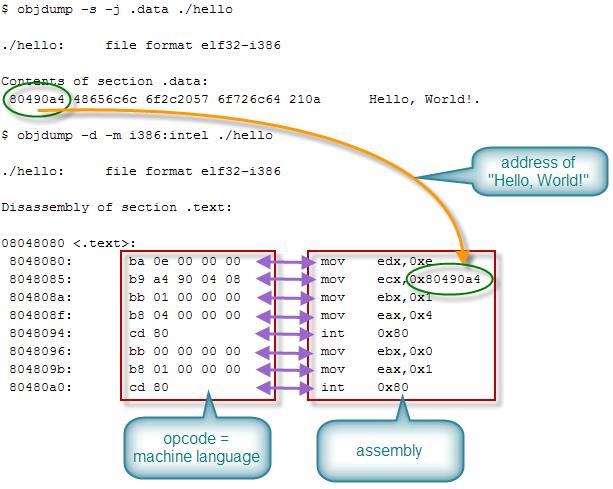 hubungan assembly dan opcode